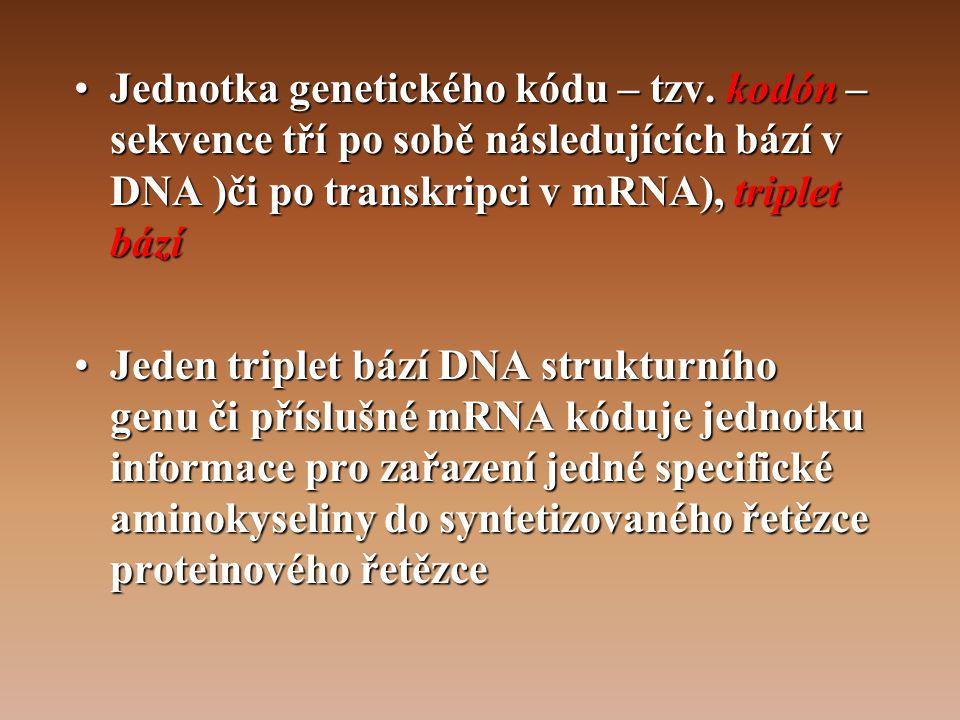 Jednotka genetického kódu – tzv