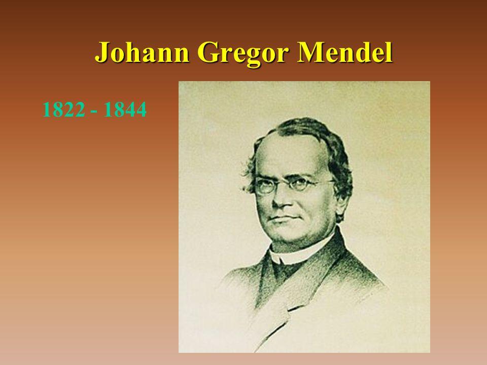 Johann Gregor Mendel 1822 - 1844