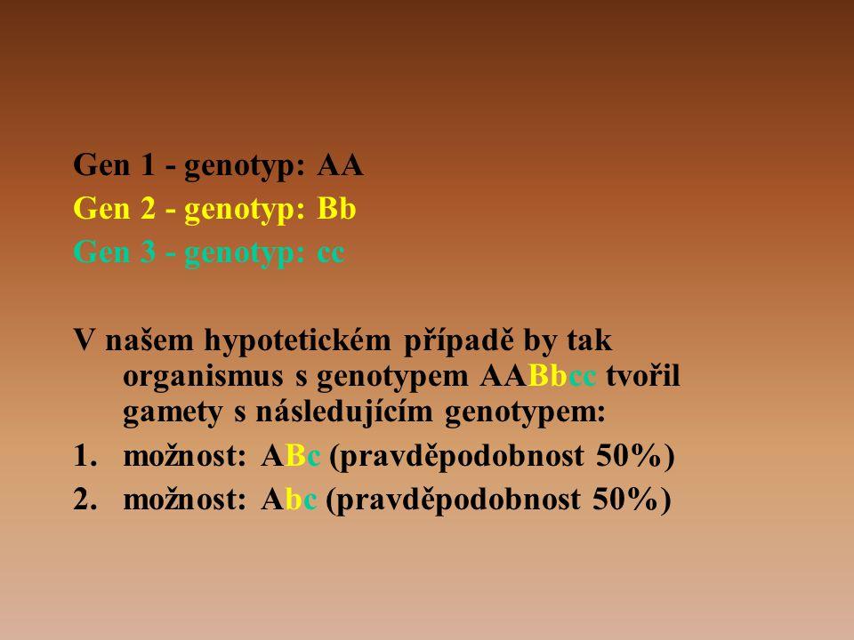 Gen 1 - genotyp: AA Gen 2 - genotyp: Bb. Gen 3 - genotyp: cc.