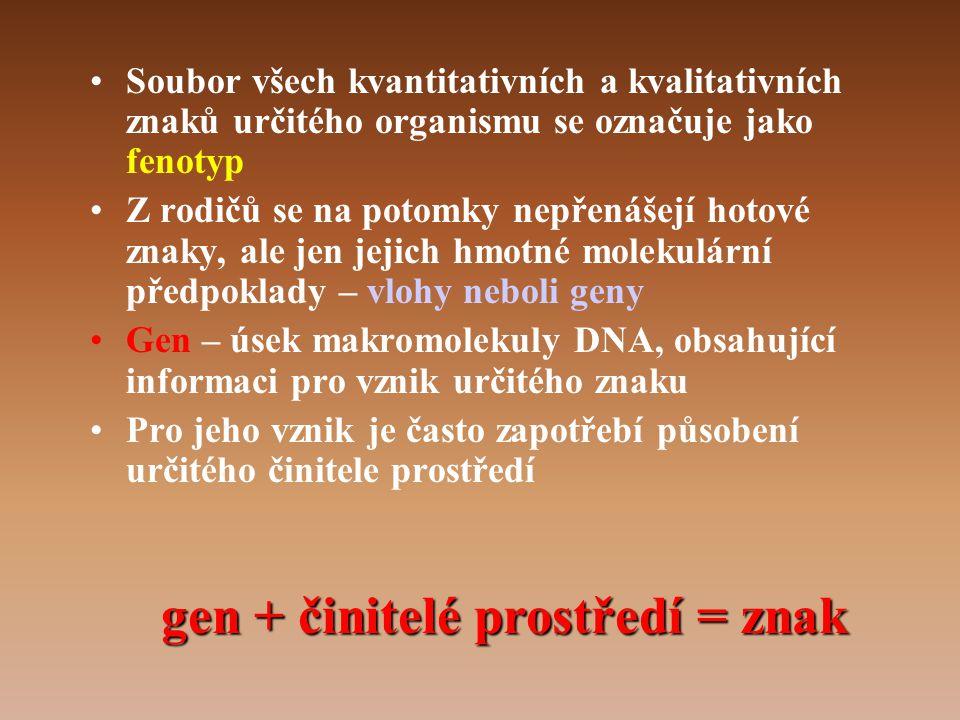 gen + činitelé prostředí = znak