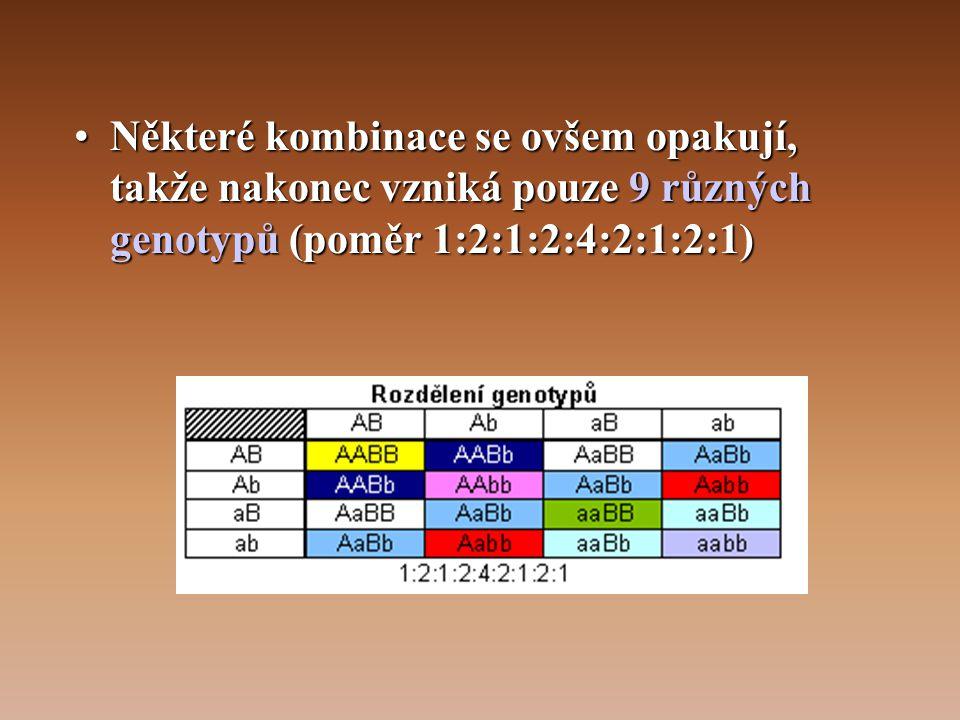 Některé kombinace se ovšem opakují, takže nakonec vzniká pouze 9 různých genotypů (poměr 1:2:1:2:4:2:1:2:1)