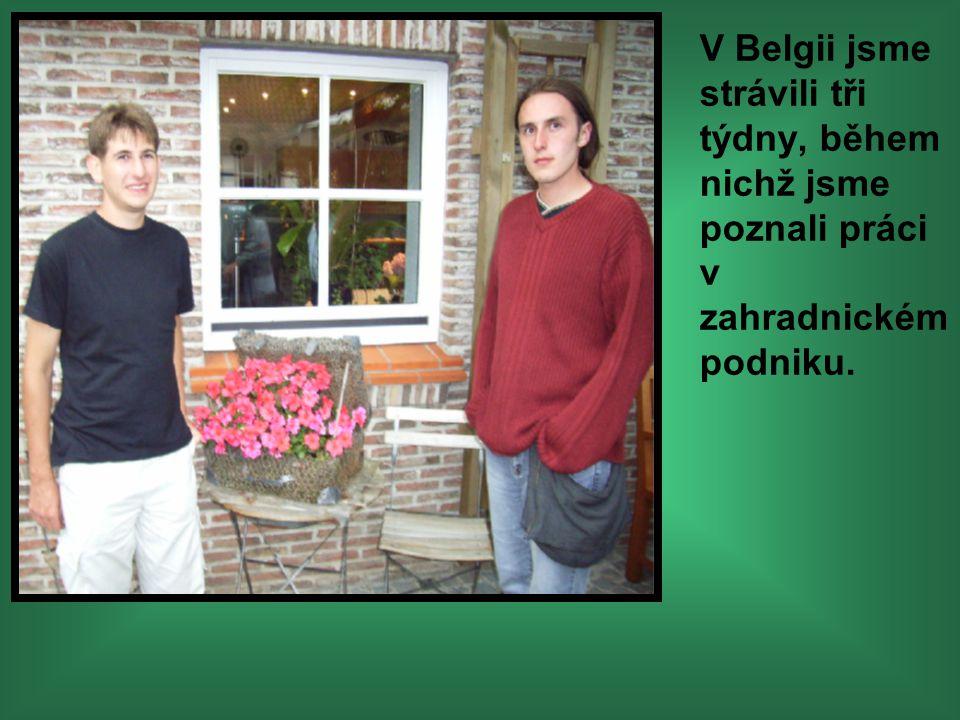 V Belgii jsme strávili tři týdny, během nichž jsme poznali práci v zahradnickém podniku.
