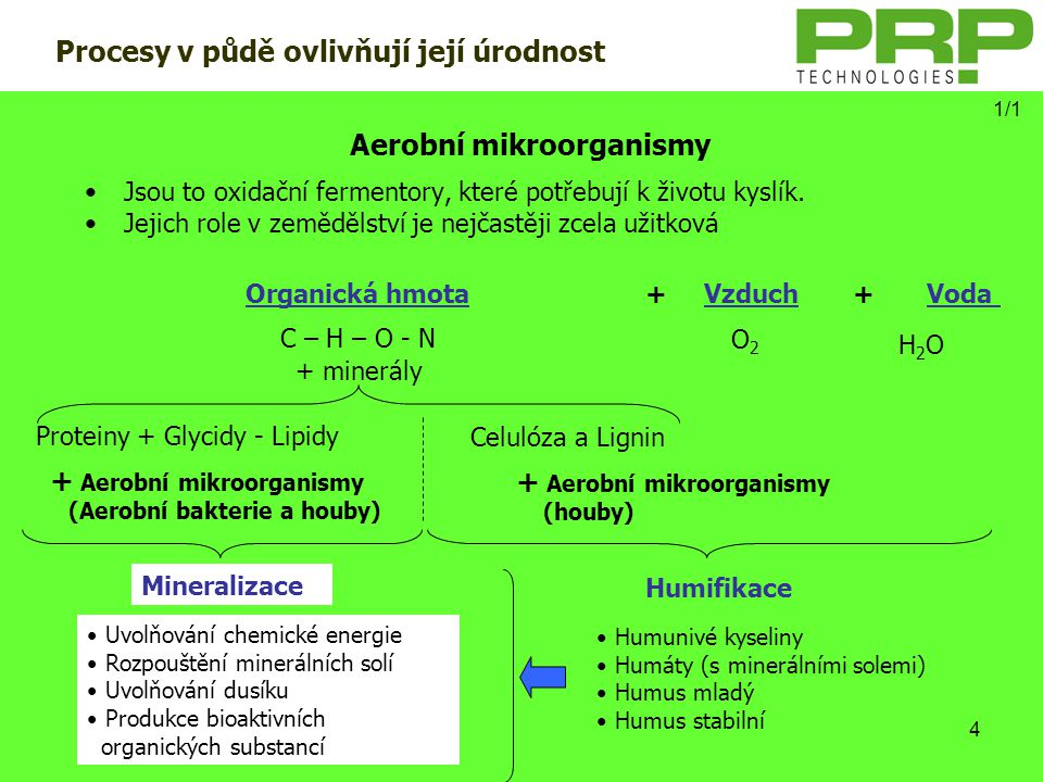 Aerobní mikroorganismy