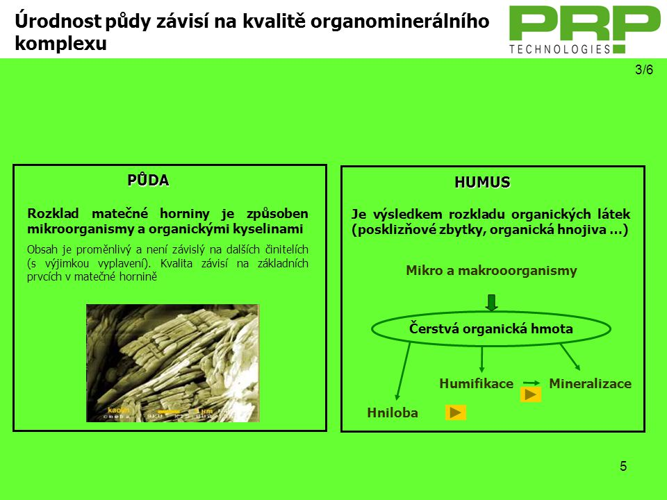 Mikro a makrooorganismy Čerstvá organická hmota