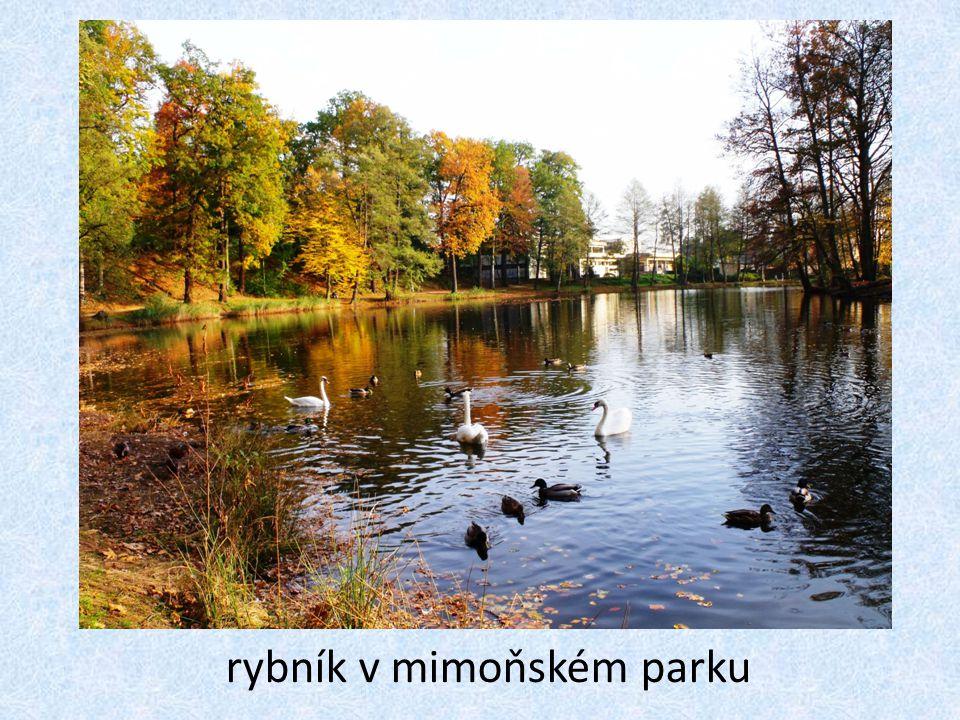 rybník v mimoňském parku