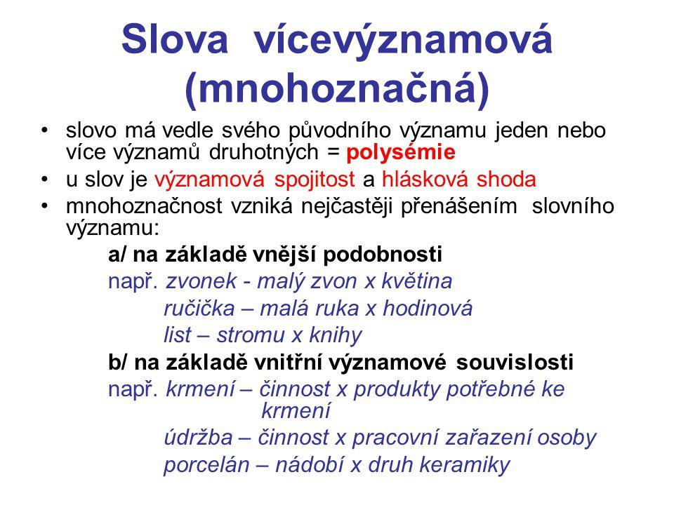 Slova vícevýznamová (mnohoznačná)