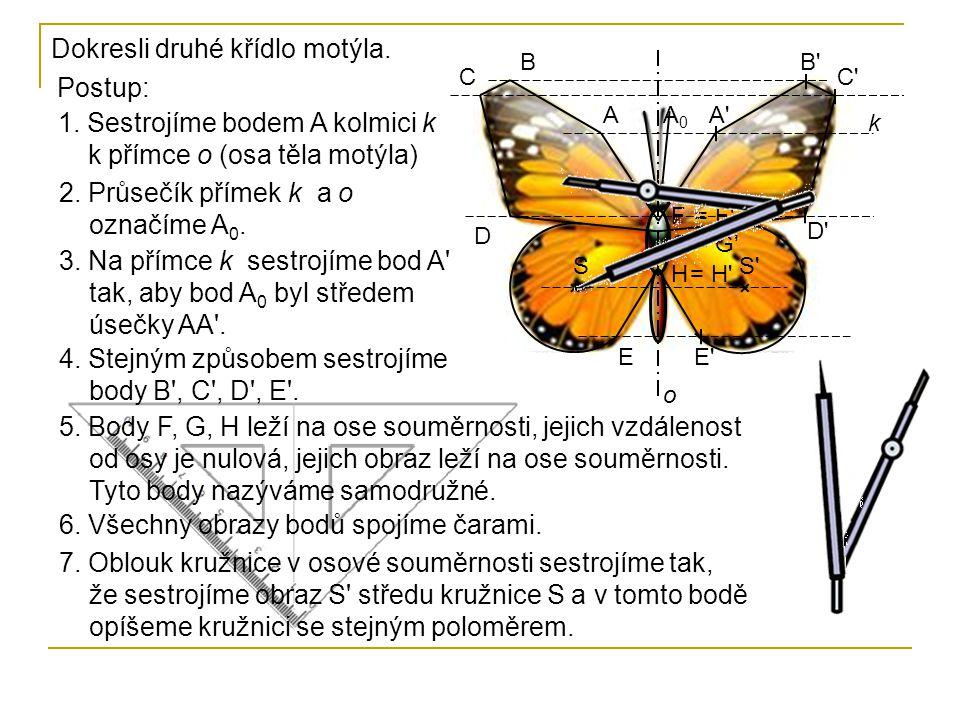 Dokresli druhé křídlo motýla. Postup: