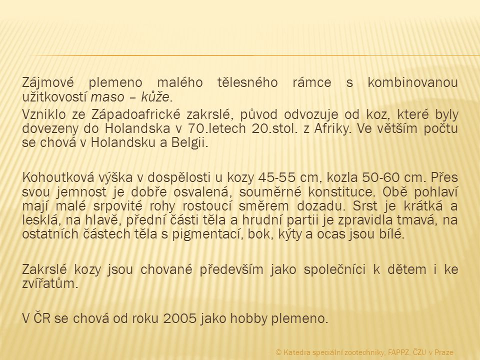 V ČR se chová od roku 2005 jako hobby plemeno.