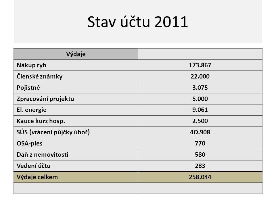 Stav účtu 2011 Výdaje Nákup ryb 173.867 Členské známky 22.000 Pojistné