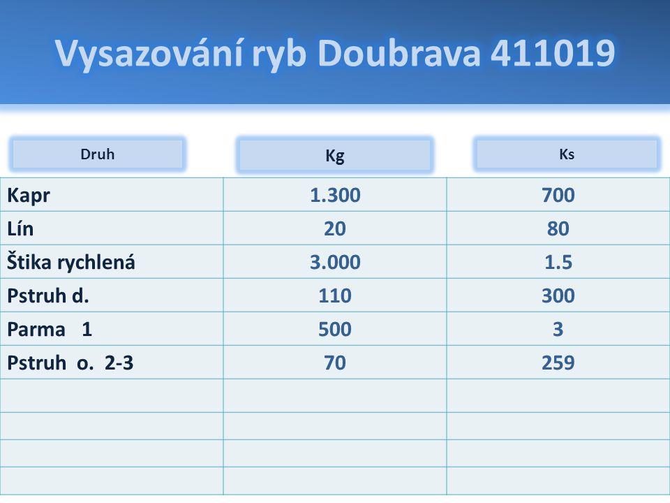 Vysazování ryb Doubrava 411019