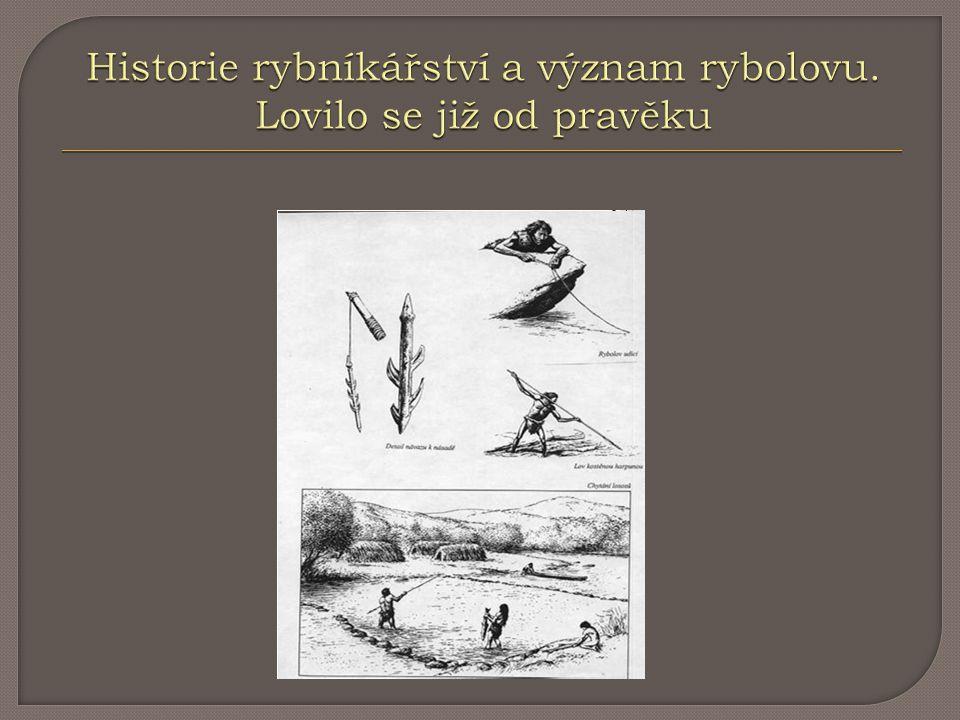 Historie rybníkářství a význam rybolovu. Lovilo se již od pravěku