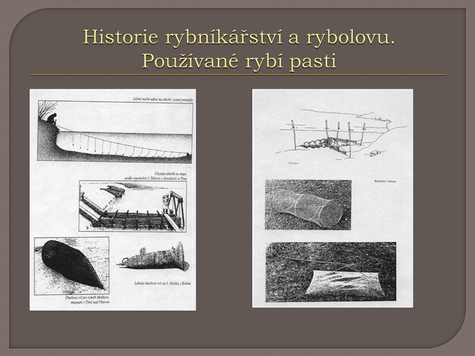 Historie rybníkářství a rybolovu. Používané rybí pasti
