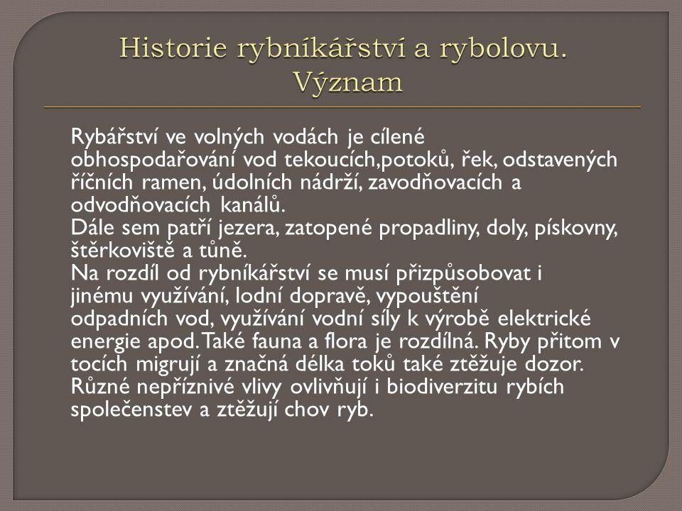 Historie rybníkářství a rybolovu. Význam