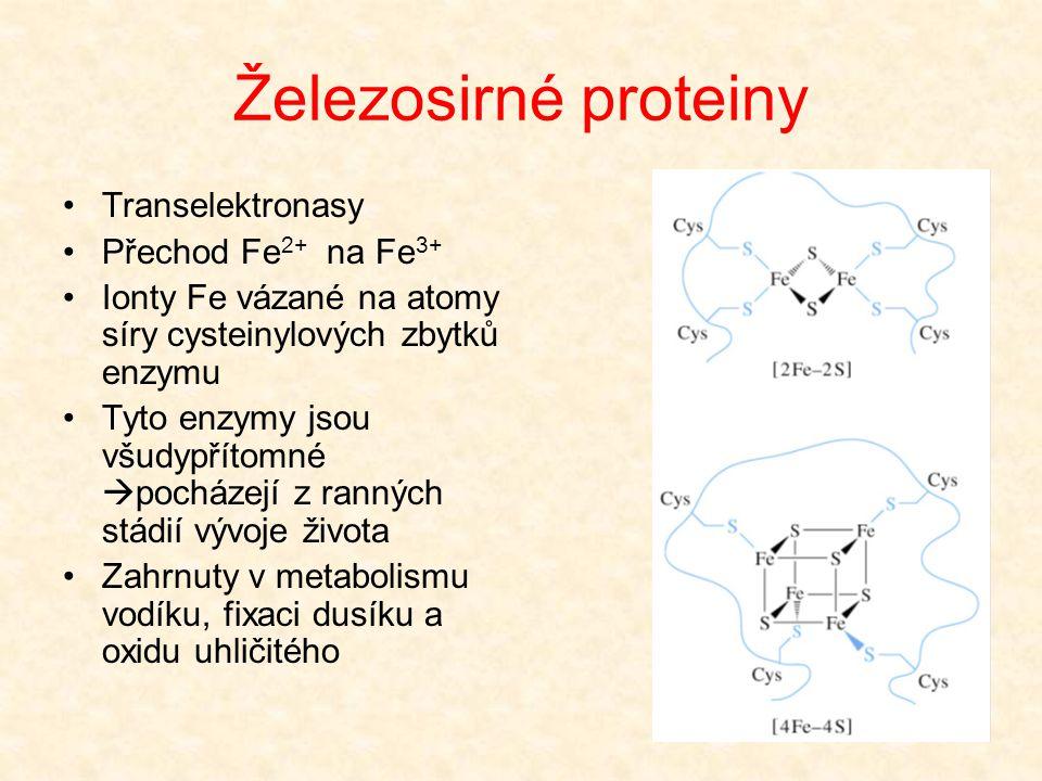 Železosirné proteiny Transelektronasy Přechod Fe2+ na Fe3+