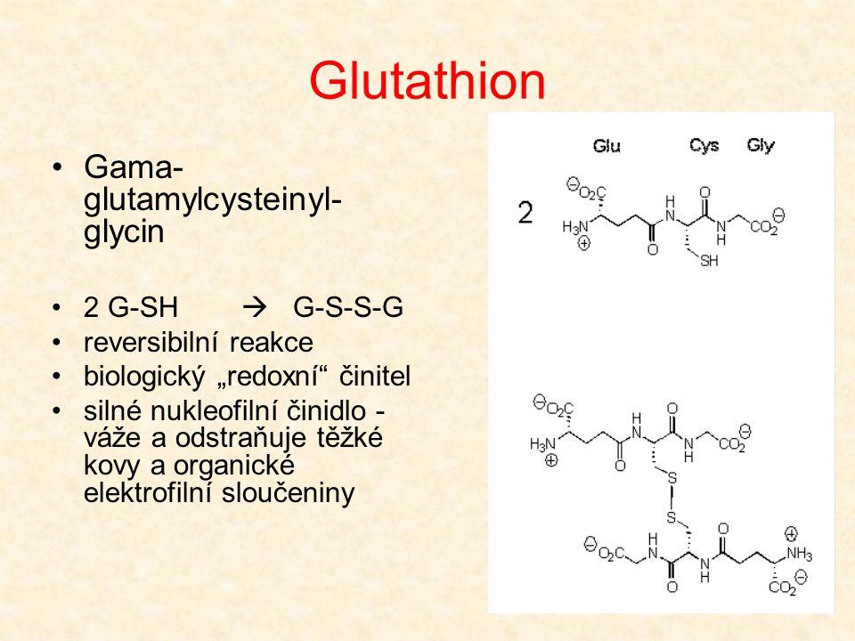 Glutathion Gama-glutamylcysteinyl-glycin 2 G-SH  G-S-S-G