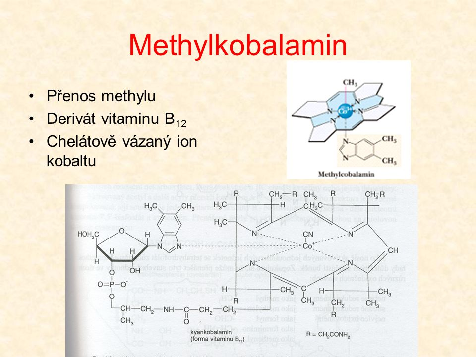 Methylkobalamin Přenos methylu Derivát vitaminu B12