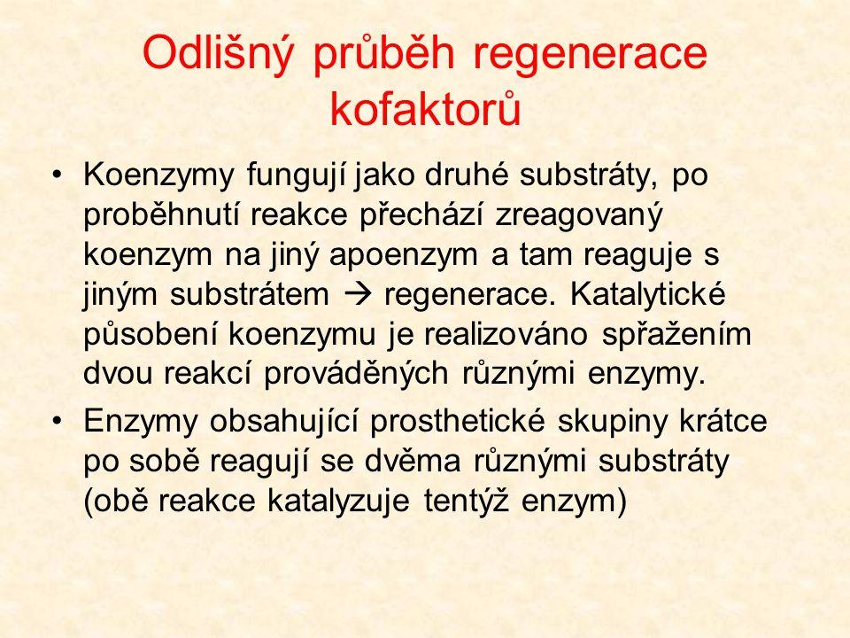 Odlišný průběh regenerace kofaktorů