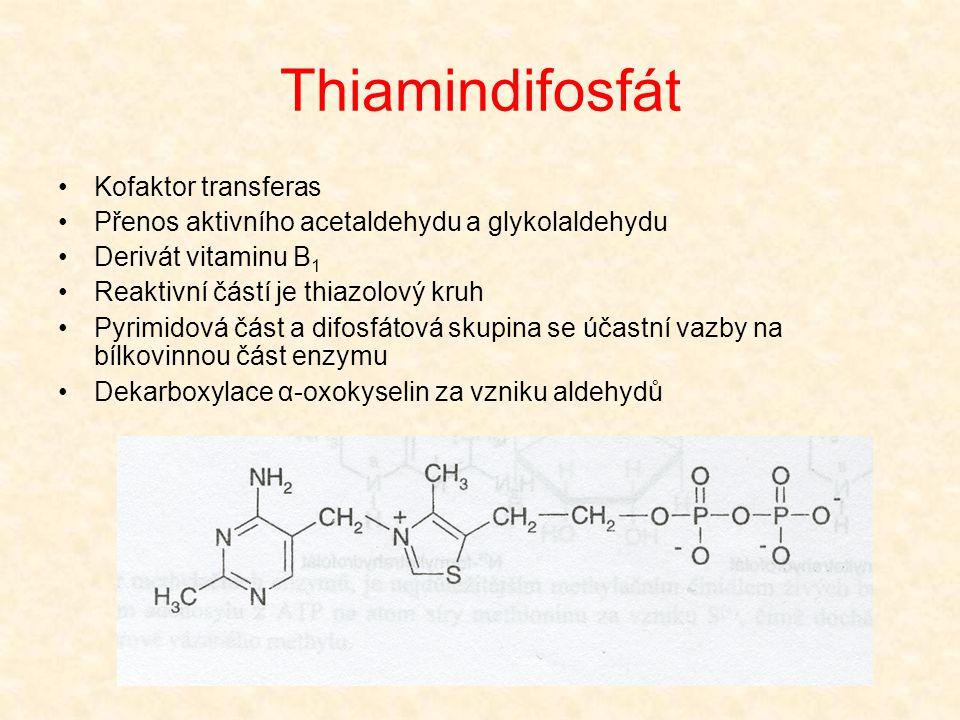 Thiamindifosfát Kofaktor transferas