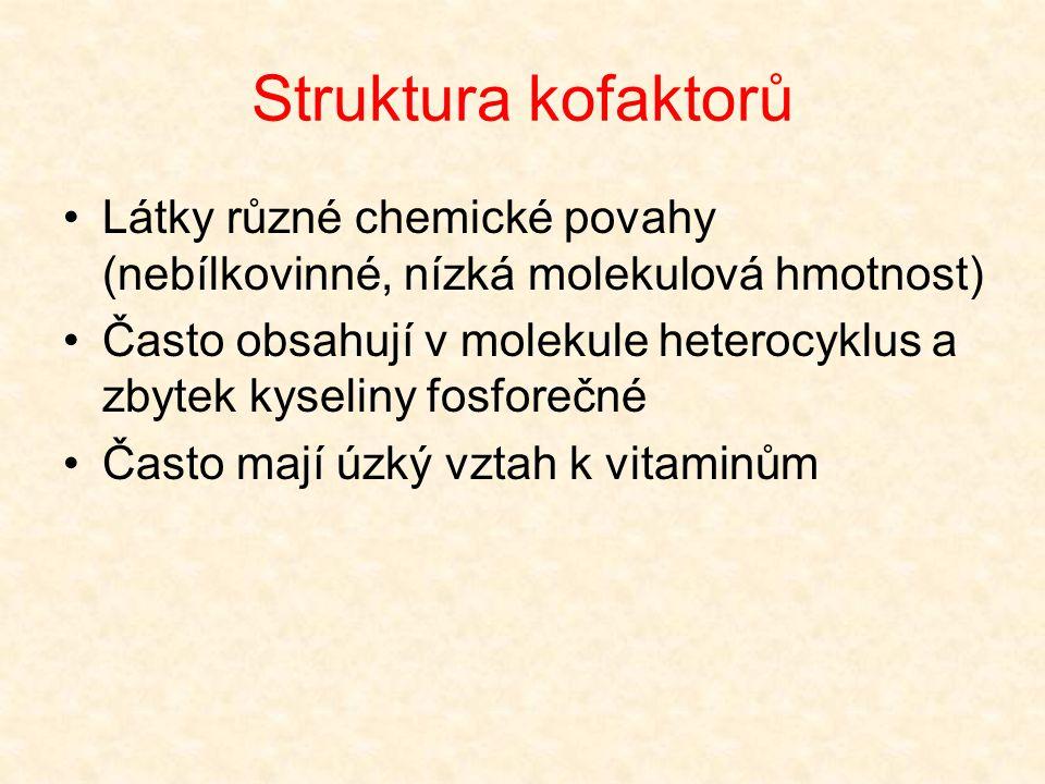 Struktura kofaktorů Látky různé chemické povahy (nebílkovinné, nízká molekulová hmotnost)