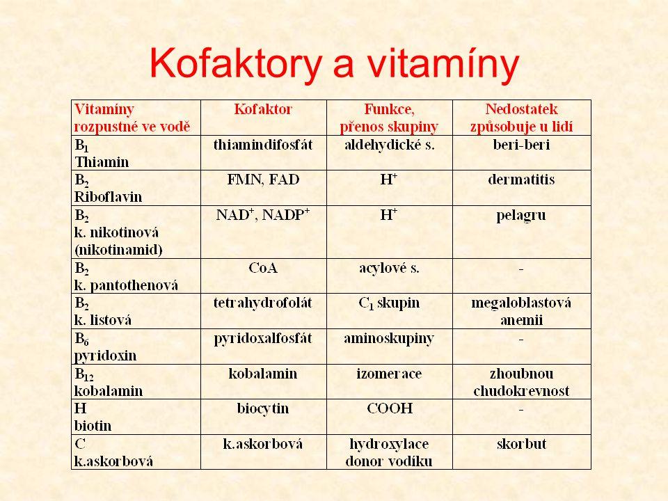 Kofaktory a vitamíny