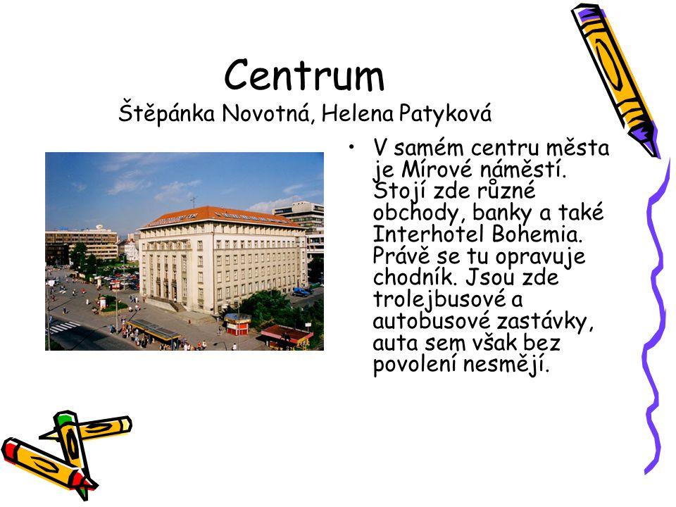 Centrum Štěpánka Novotná, Helena Patyková