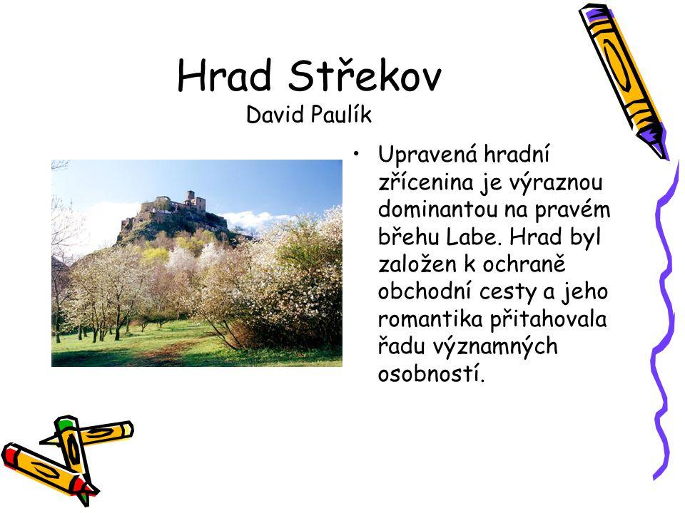 Hrad Střekov David Paulík
