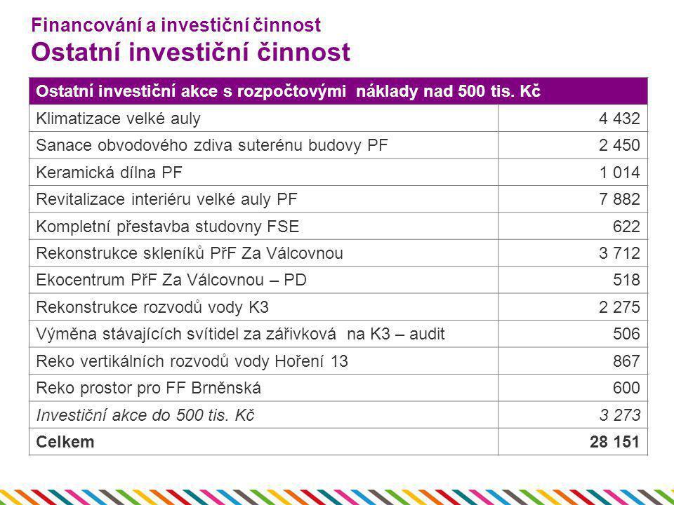 Financování a investiční činnost Ostatní investiční činnost