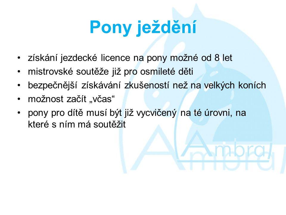Pony ježdění získání jezdecké licence na pony možné od 8 let
