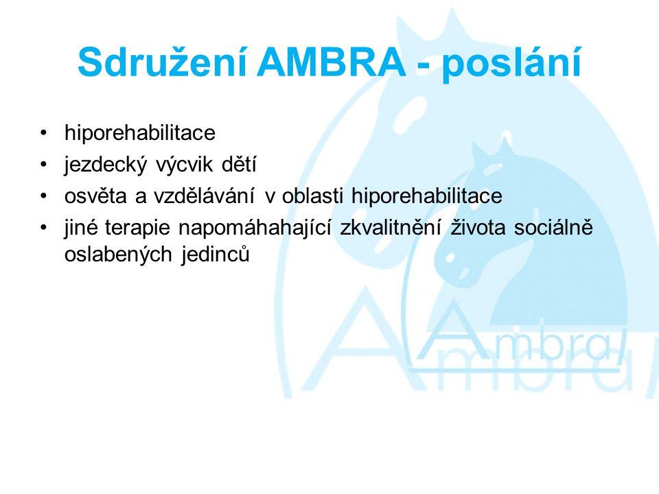 Sdružení AMBRA - poslání