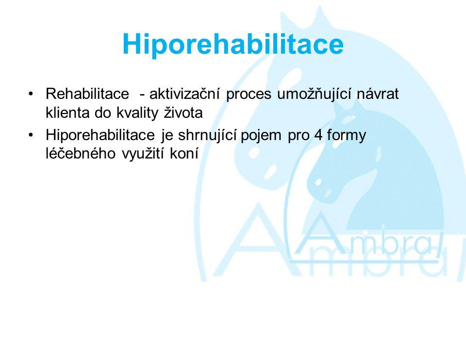 Hiporehabilitace Rehabilitace - aktivizační proces umožňující návrat klienta do kvality života.