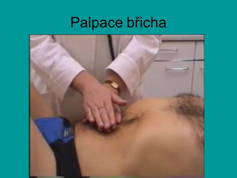 Palpace břicha