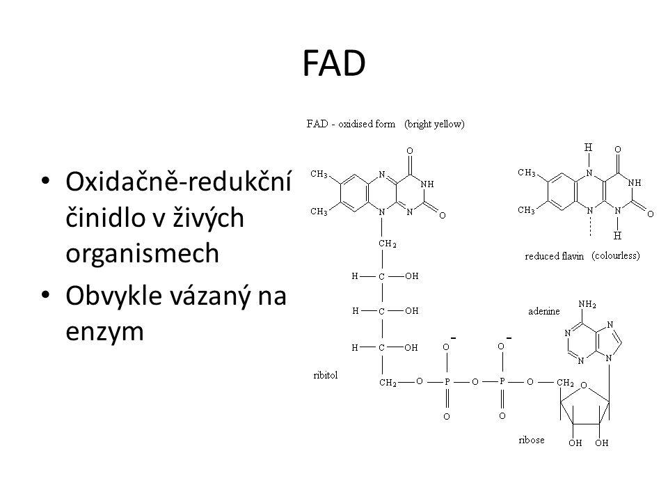 FAD Oxidačně-redukční činidlo v živých organismech