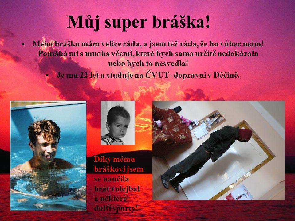 Je mu 22 let a studuje na ČVUT- dopravní v Děčíně.