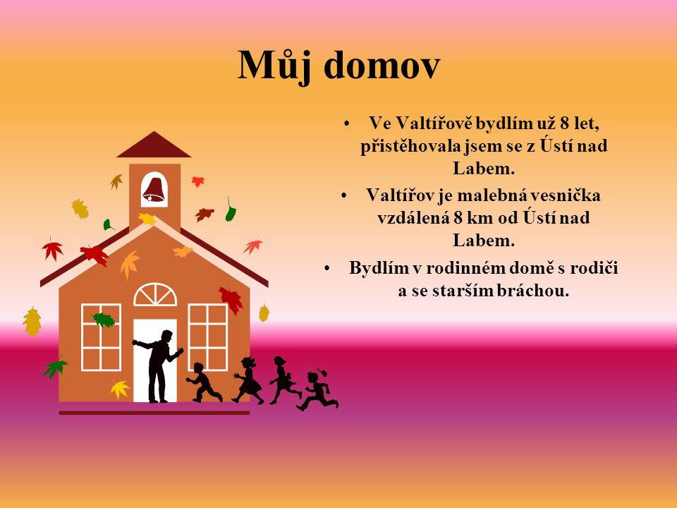 Můj domov Ve Valtířově bydlím už 8 let, přistěhovala jsem se z Ústí nad Labem. Valtířov je malebná vesnička vzdálená 8 km od Ústí nad Labem.