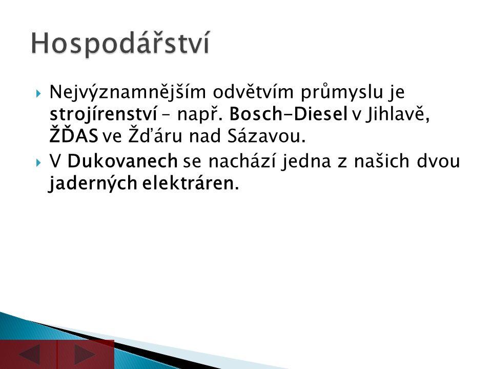 Hospodářství Nejvýznamnějším odvětvím průmyslu je strojírenství – např. Bosch-Diesel v Jihlavě, ŽĎAS ve Žďáru nad Sázavou.