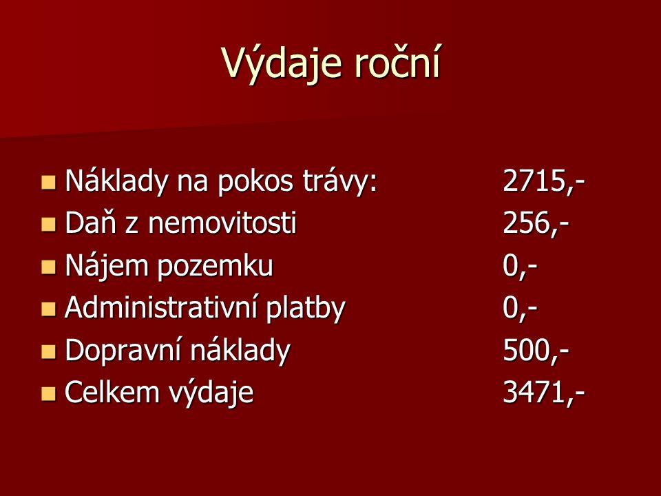 Výdaje roční Náklady na pokos trávy: 2715,- Daň z nemovitosti 256,-