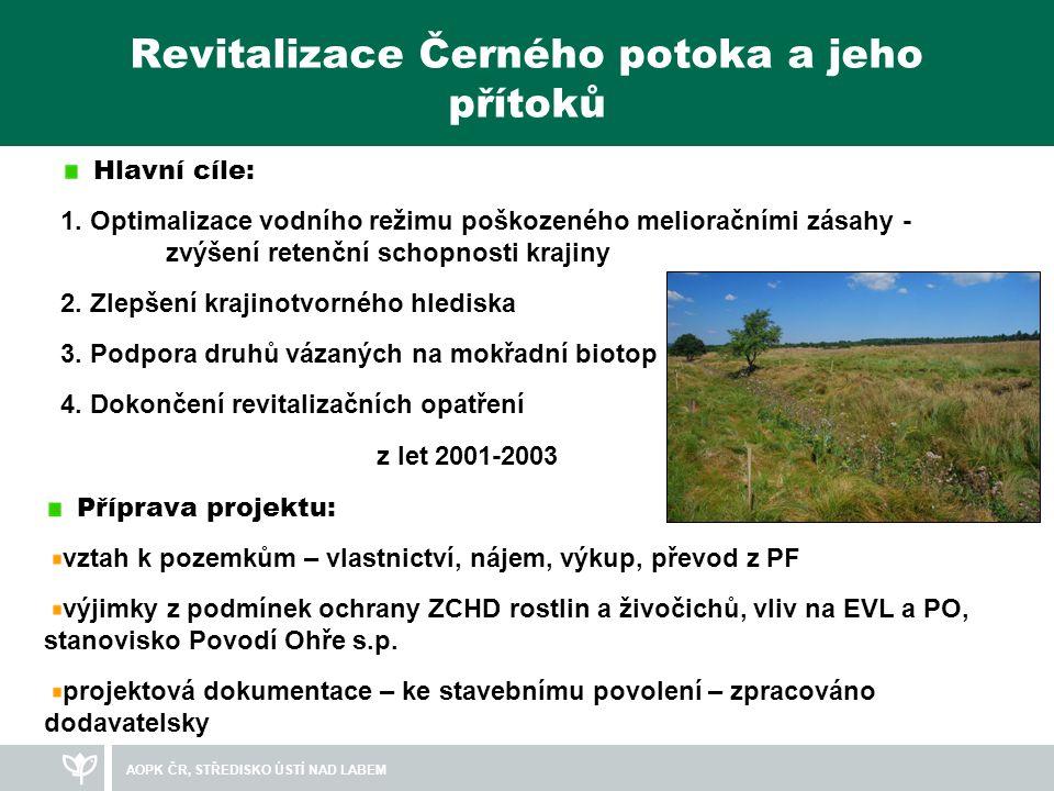 Revitalizace Černého potoka a jeho přítoků