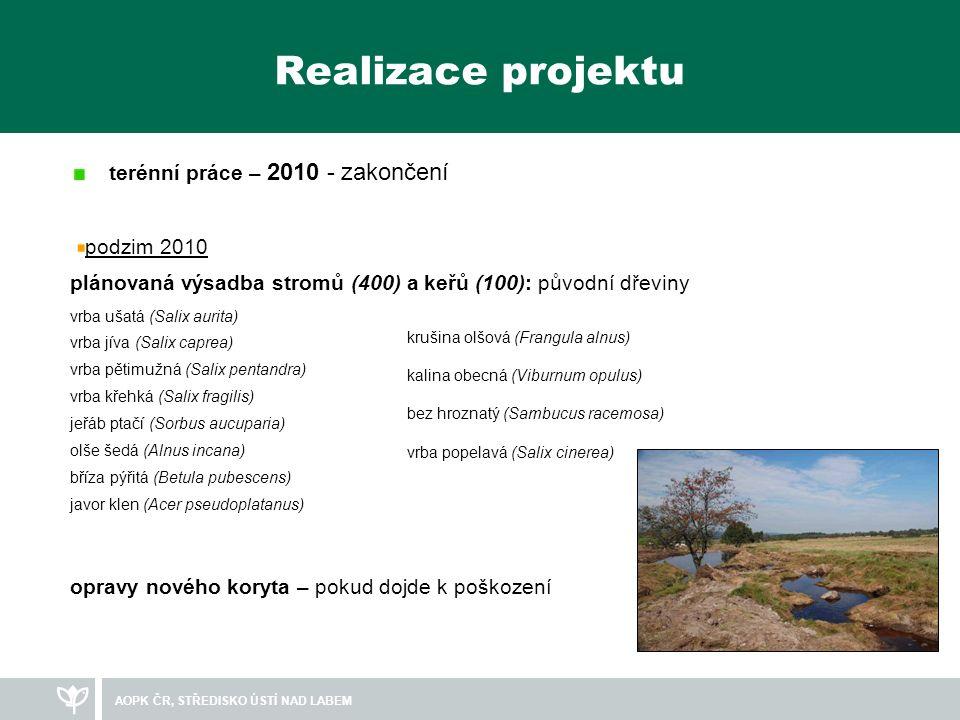 Realizace projektu terénní práce – 2010 - zakončení podzim 2010