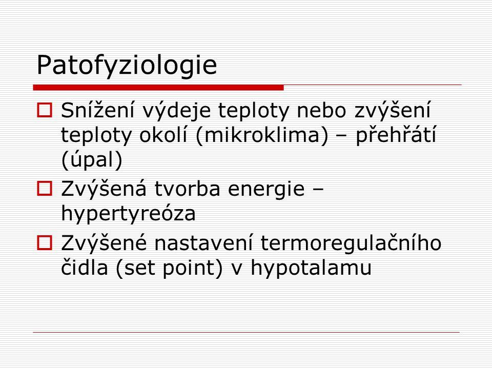 Patofyziologie Snížení výdeje teploty nebo zvýšení teploty okolí (mikroklima) – přehřátí (úpal) Zvýšená tvorba energie – hypertyreóza.