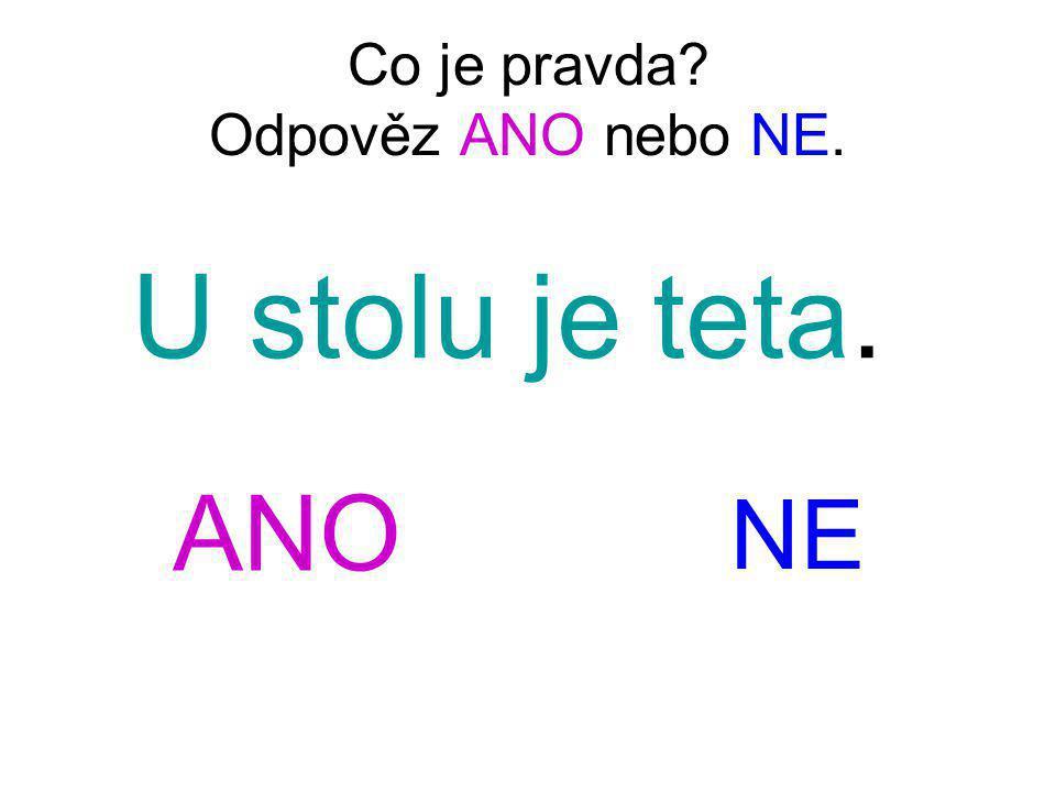 Co je pravda Odpověz ANO nebo NE.