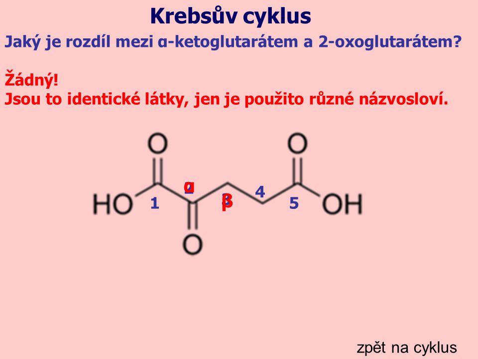 Krebsův cyklus Jaký je rozdíl mezi α-ketoglutarátem a 2-oxoglutarátem Žádný! Jsou to identické látky, jen je použito různé názvosloví.