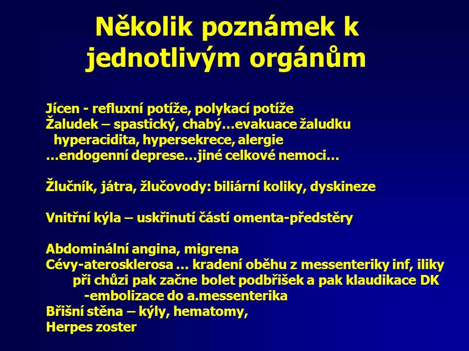 Několik poznámek k jednotlivým orgánům