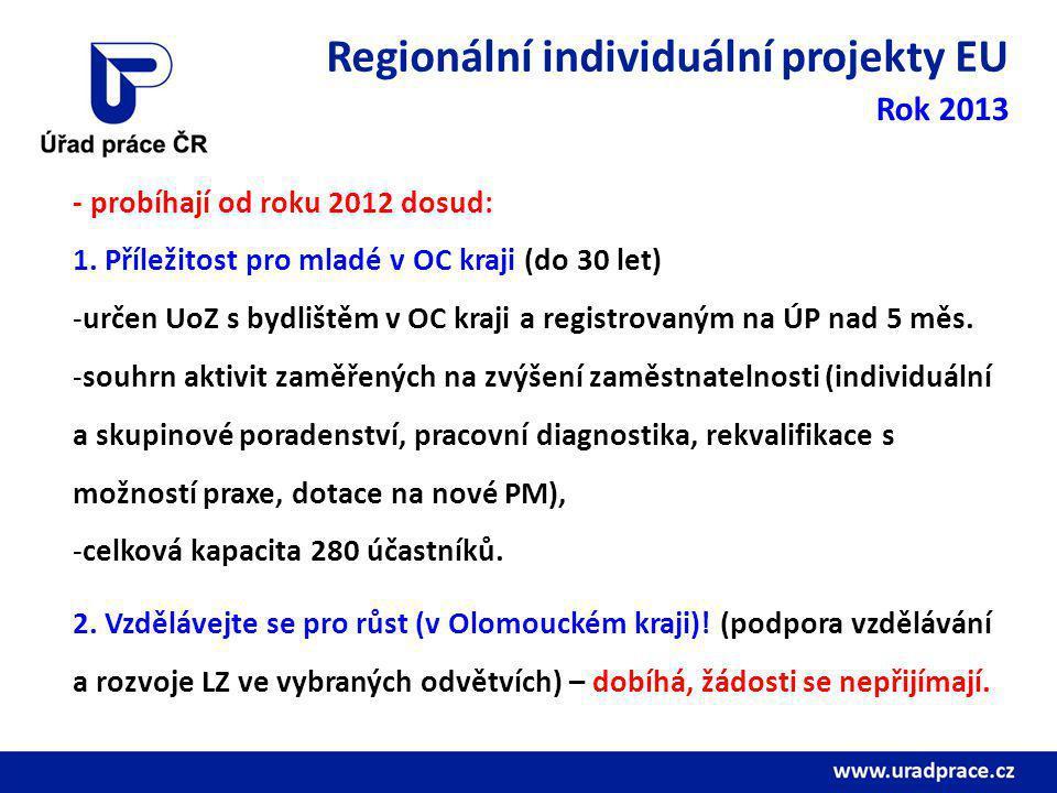 Regionální individuální projekty EU