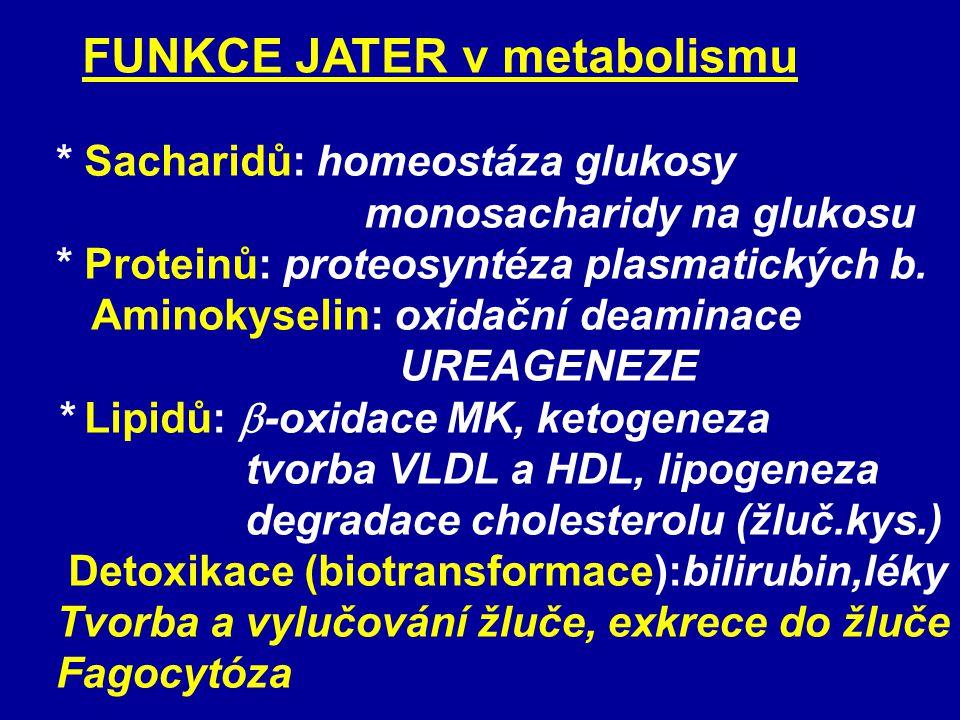 FUNKCE JATER v metabolismu