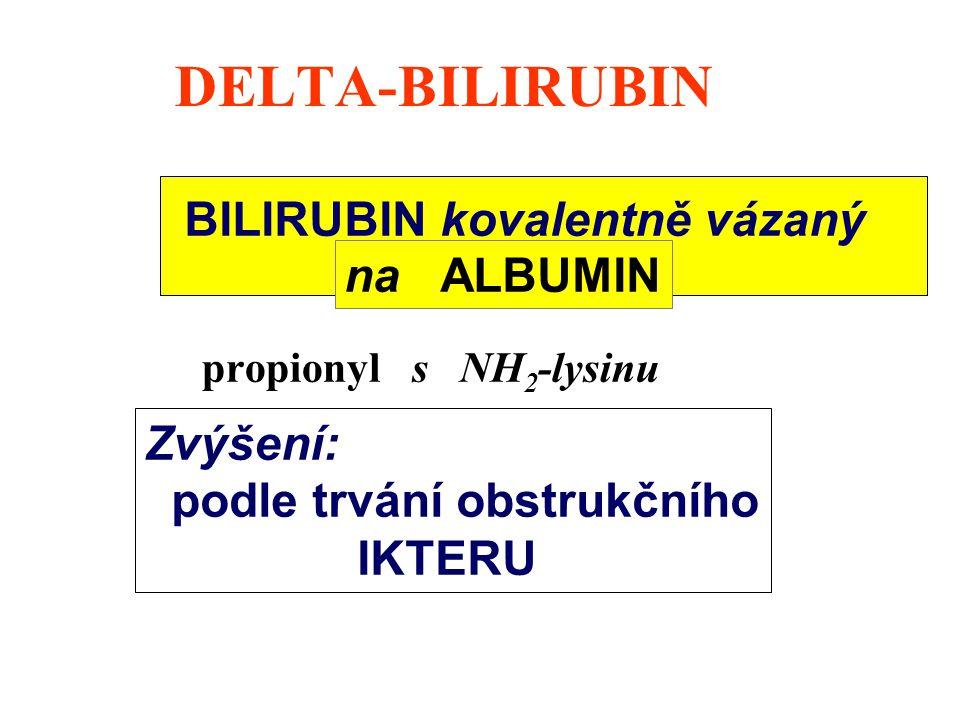 DELTA-BILIRUBIN BILIRUBIN kovalentně vázaný