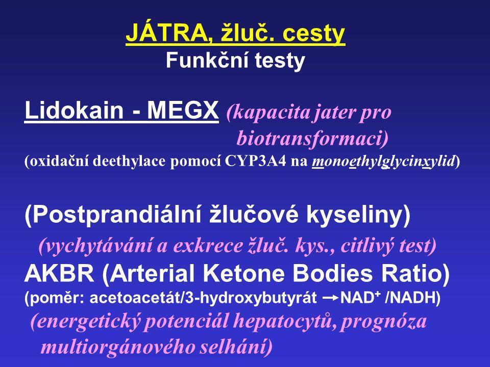 Lidokain - MEGX (kapacita jater pro biotransformaci)
