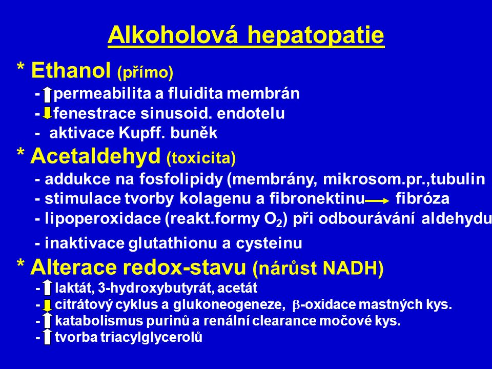 Alkoholová hepatopatie