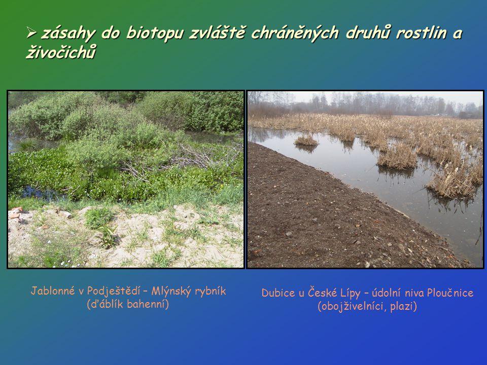 zásahy do biotopu zvláště chráněných druhů rostlin a živočichů