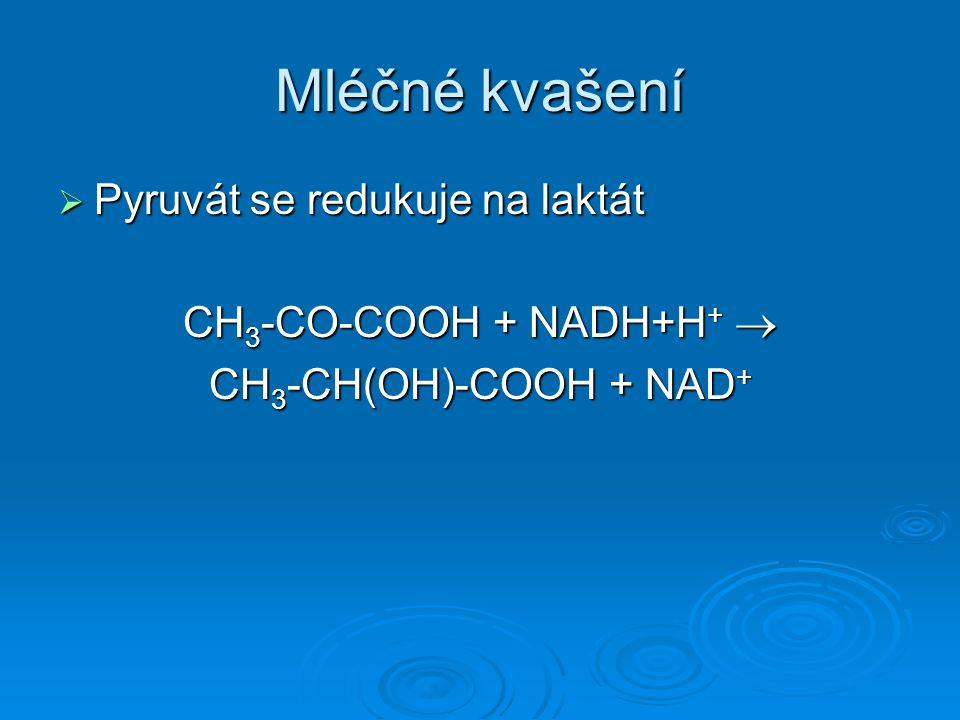 Mléčné kvašení Pyruvát se redukuje na laktát CH3-CO-COOH + NADH+H+ 