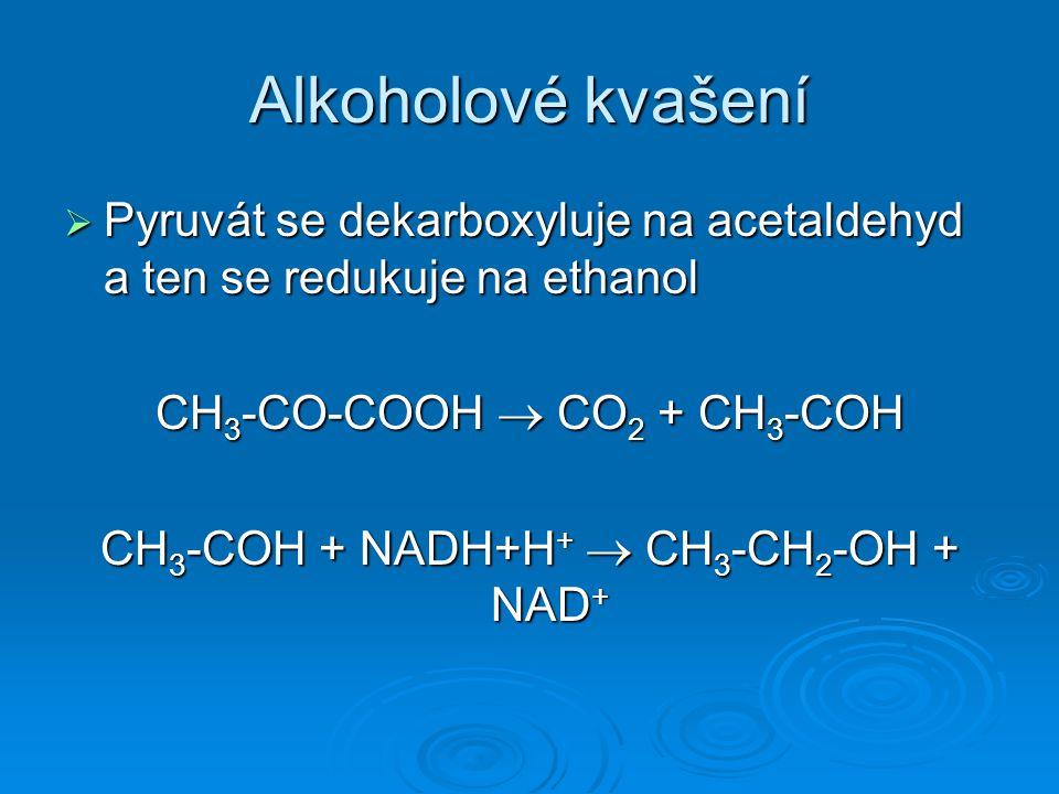 Alkoholové kvašení Pyruvát se dekarboxyluje na acetaldehyd a ten se redukuje na ethanol. CH3-CO-COOH  CO2 + CH3-COH.